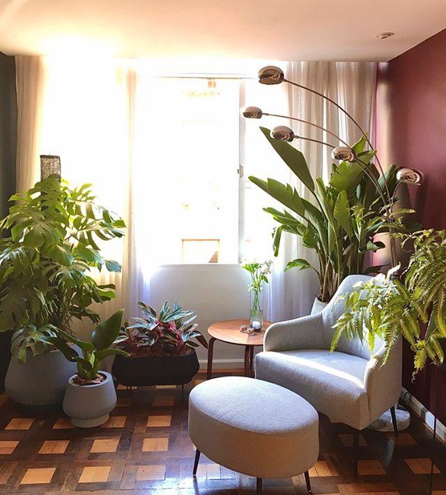 Bendito Verde Design