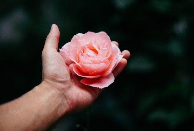 Na busca constante por oferecer mais qualidade de vida e saúde, o Instituto da Mama do RS - Imama RS - está lançando, neste mês de fevereiro de 2021, o Núcleo de Terapias Integrativas.